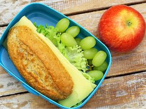 Lunch box police need to stop shaming parents