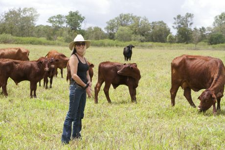 Juanita Angus has been working with Reef Catchments to improve her Bloomsbury property.