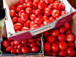 Fruit harvest a summer delight
