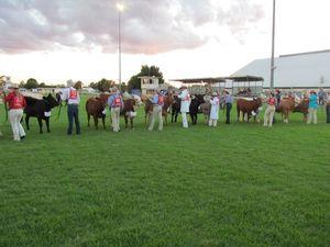 Clifton stud heifer show entries open