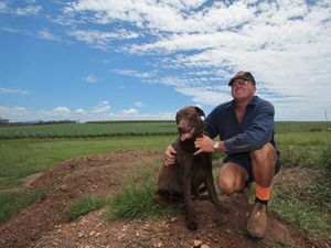 "Bidwill grower ""bit bloody disappointed"" rain hasn't hit yet"