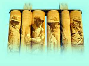 Is Kingaroy next in line for a mural on our peanut silos?
