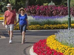 Queens Park blooming