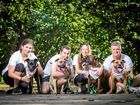 ADOPTION DAY: Pet rescue organisations will be educating locals about how to nurture abandoned pets into loving homes.
