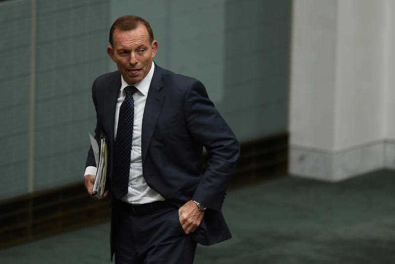 Following weeks of speculation, former prime minister Tony Abbott has confirmed he will recontest the federal seat of Warringah at the next election.