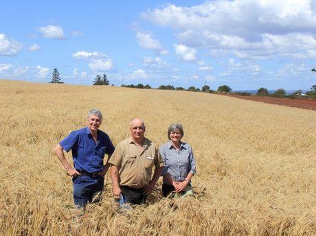 Kingaroy Concerned Citizen Group members John Dalton, Gary Tessmann and Neralie O'Sullivan.