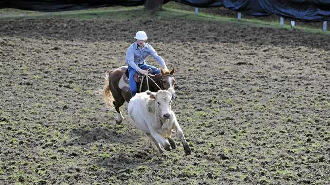 UP AND COMER: Cody Ensby  gained invaluable experience in the ABCRA National Campdrafting finals.