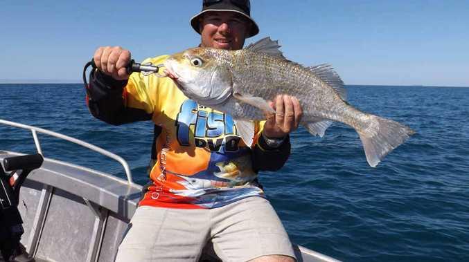 plenty of fish central coast