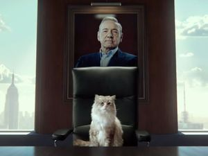 First look at Kevin Spacey's latest role as... a cat?