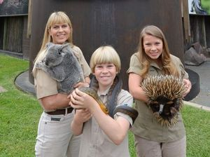 Crikey! The Irwins are going into the jungle