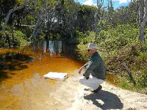 Trial traps hit toad tadpoles hard on Bribie
