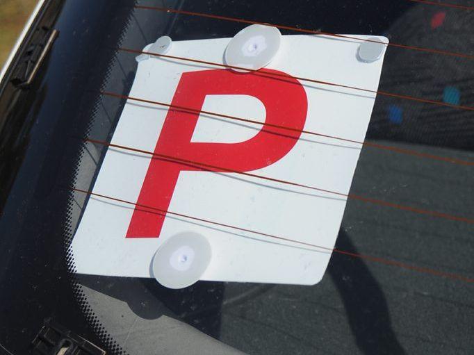 P plate in rear window Photo: Alistair Brightman / Fraser Coast Chronicle