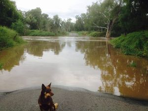 Roads closed across CQ as floodwaters block access