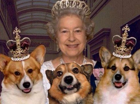 Queen Elizabeth and her beloved corgis.