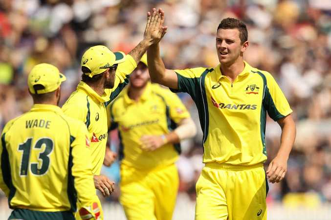 Josh Hazlewood claims a wicket yesterday against New Zealand. Photo: AAP Image.