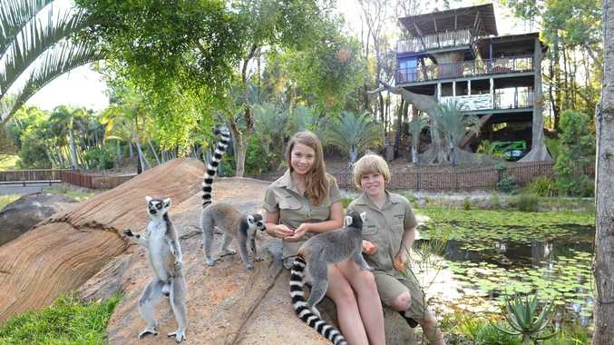 Bindi Irwin... heading back into the TV limelight with her mum Terri and brother Robert