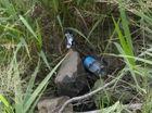 Rubbish strewn on Table Top Mountain.