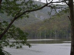 Blue-green algae levels keep Borumba Dam partially closed