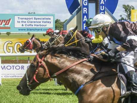 5 - Splitzer makes a last minute dash on the extreme outside (front) take just win Race 4 Laisee Summer Dash at Clarence River Jockey Club.