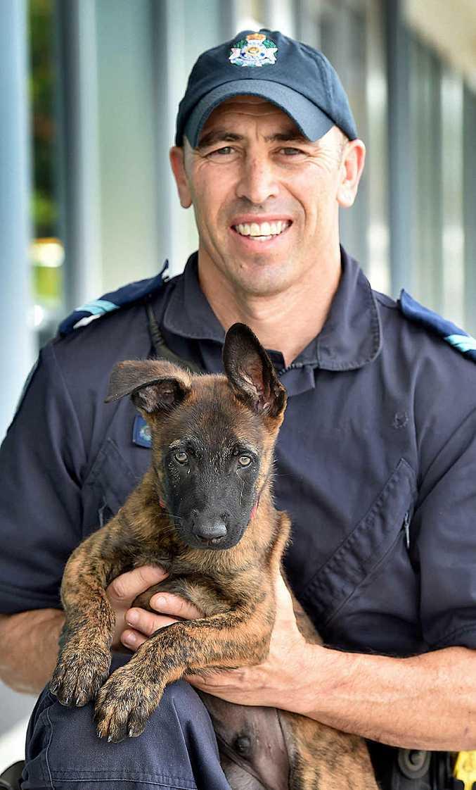CUTE RECRUIT: New police dog recruit Castro with his handler Senior Constable Brendon Dellow.