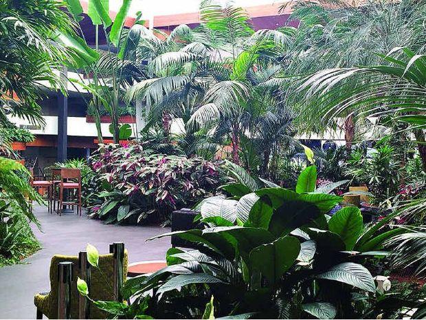hotel lobby guests enjoy a coffee in a lush tropical garden atmosphere - Tropical Garden 2016