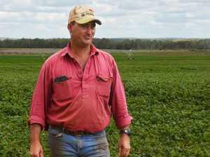 El Niño force doesn't break South Burnett farmers