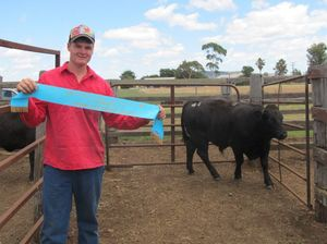 Fourth prime win in a row for cattle exhibitors