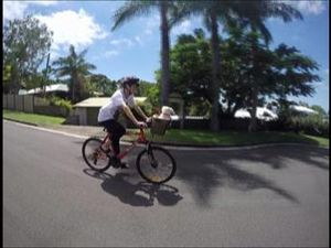 Poodle flies on a bicycle