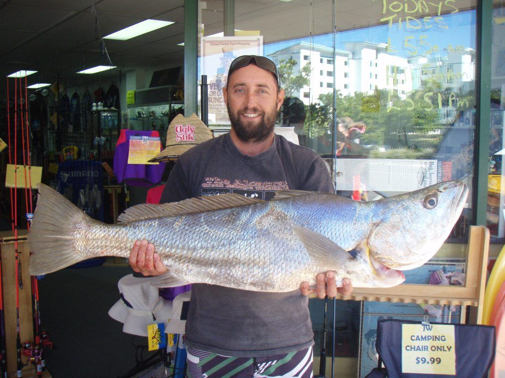 DINNER TIME: Anthony Watts with a nice size Jewfish or mulloway.