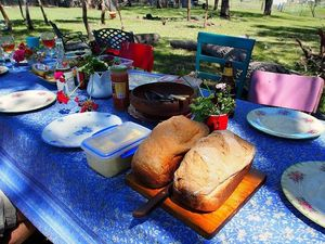 Picnic lunch delights in summer
