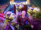 CENTRE STAGE: Animal trainer with Lennon Bros circus Rod Levy with his three camels who perform in the show.