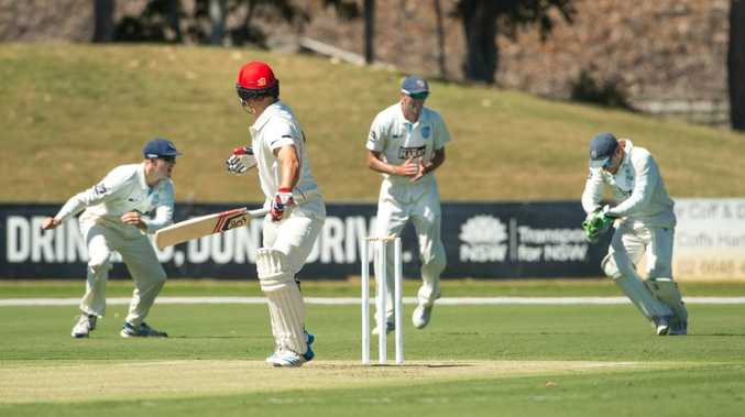 C'MON THE BLUES: If the NSW Blues finish on top of the Sheffield Shield table, Coffs Harbour will be hosting the final.