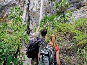 Five of the best to places to bushwalk