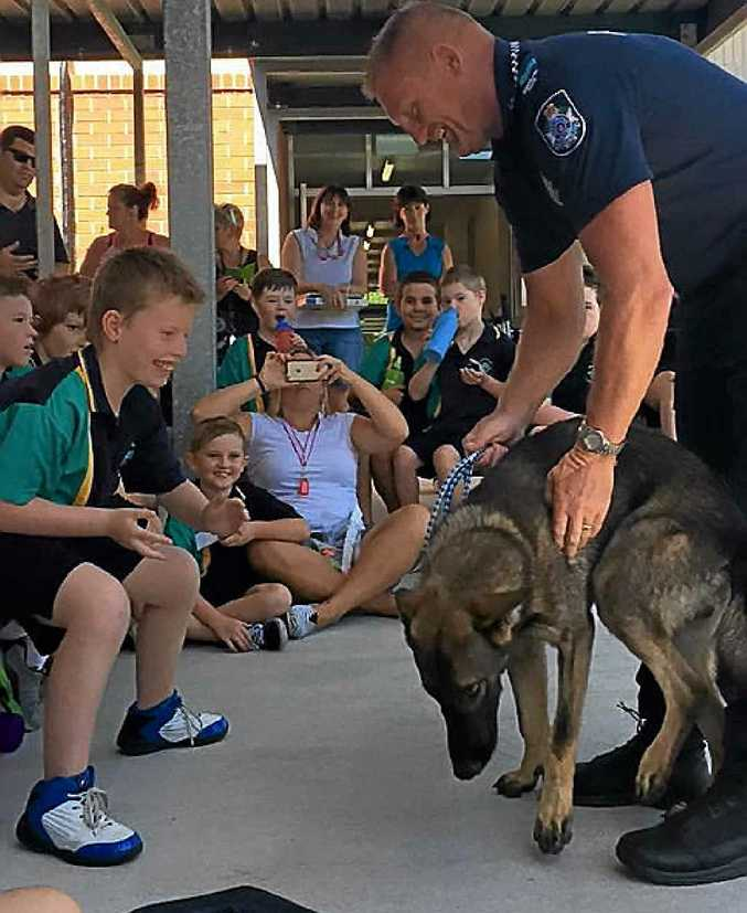 A BIT SHY: Currimundi Special School student Jack McGlynn (left) enjoys a visit by Dog Squad officer Senior Constable Marty Wilson and Police Puppy Ziggy.
