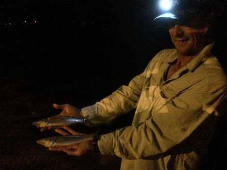 OFF BRADMAN AVENUE: Jason fished over night on Sunday for a few good quality whiting.