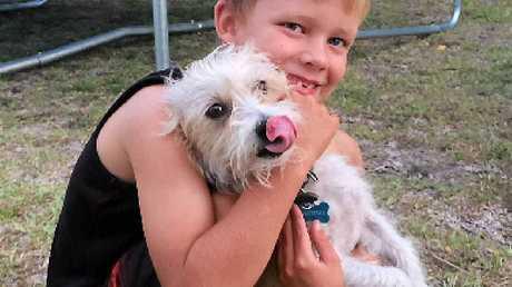 CHERISHED MEMORIES: Zak Pain with his beloved Silky Terrier Bobbie Bingo. Donna Pain described Bobbie Bingo as a