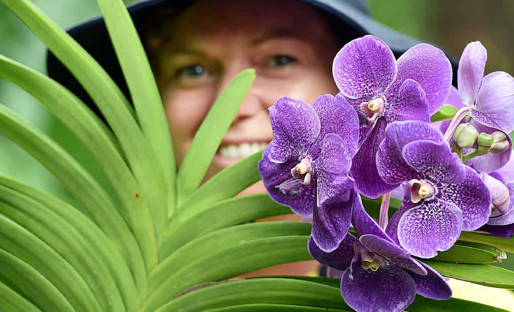 HYBRID: Vicky Riley, horticulturalist at the Hervey Bay Botanic Gardens, with a vanda hybrid orchid – Pat's Delight.