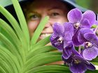 Hervey Bay's Orchid House will host its monthly guest speaker on August 10.