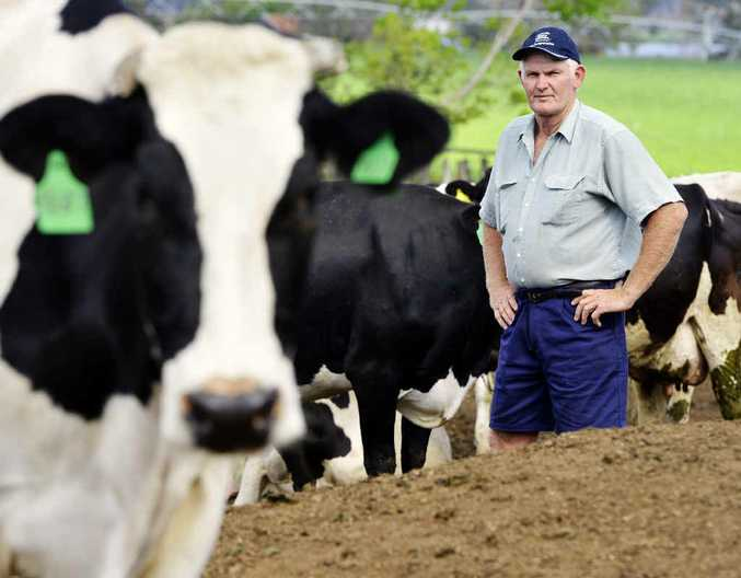 GIVE US A FAIR GO: Harrisville dairy farmer Ross McInnes says his industry is up against market forces that make it tougher by the day to make a living.
