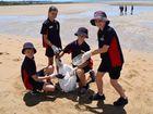 WATCH: Kids clean Pialba's beach for Clean up Australia Day
