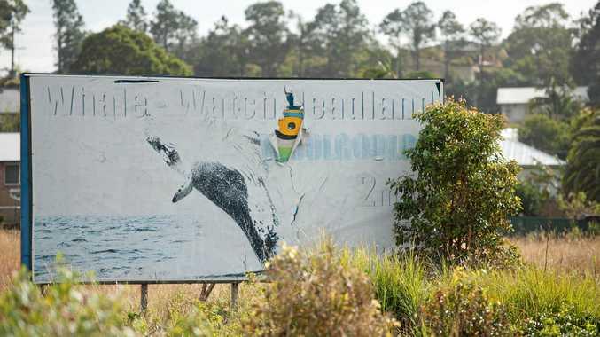 Roadside whale watch sign woolgoolga22 JULY 2015Photo Trevor Veale / Coffs Coast Advocate