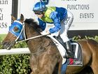 Tycoon Ace and apprentice Tiffani Brooker complete their win in yesterday's Class 3 Plate at Clifford Park.