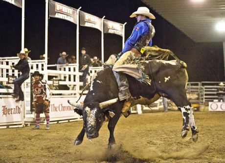 Enjoy watching the toughest sport on dirt at the Toowoomba Touring Rodeo.