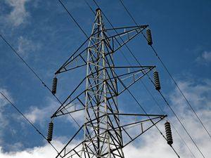 Falling tree brings down power lines