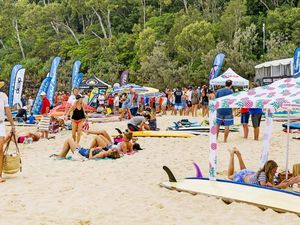 Noosa Festival of Surfing: Dogs spectacular