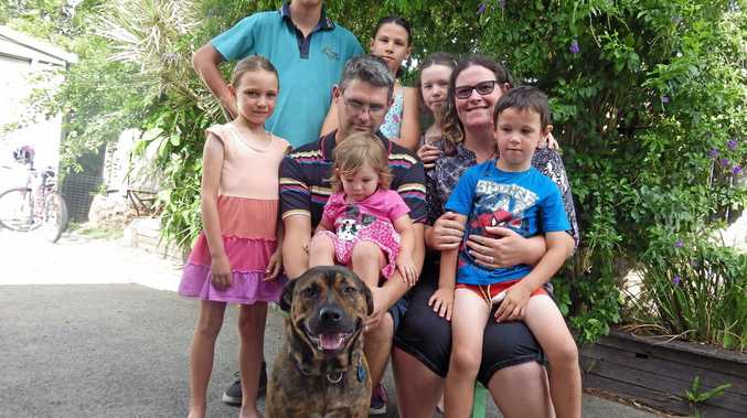 The McClelland family is seeking a new house to rent in the Casino/Coraki/Woodburn area, after a storm ripped the roof off their home. The property would need to be big enough for Ben, 15, Tahlia, 11, Jessica, 9, Heidi, 7, Lachlan, 5, Indigo, 2, dad David, mum Rebekah and the family's dog Bowie.
