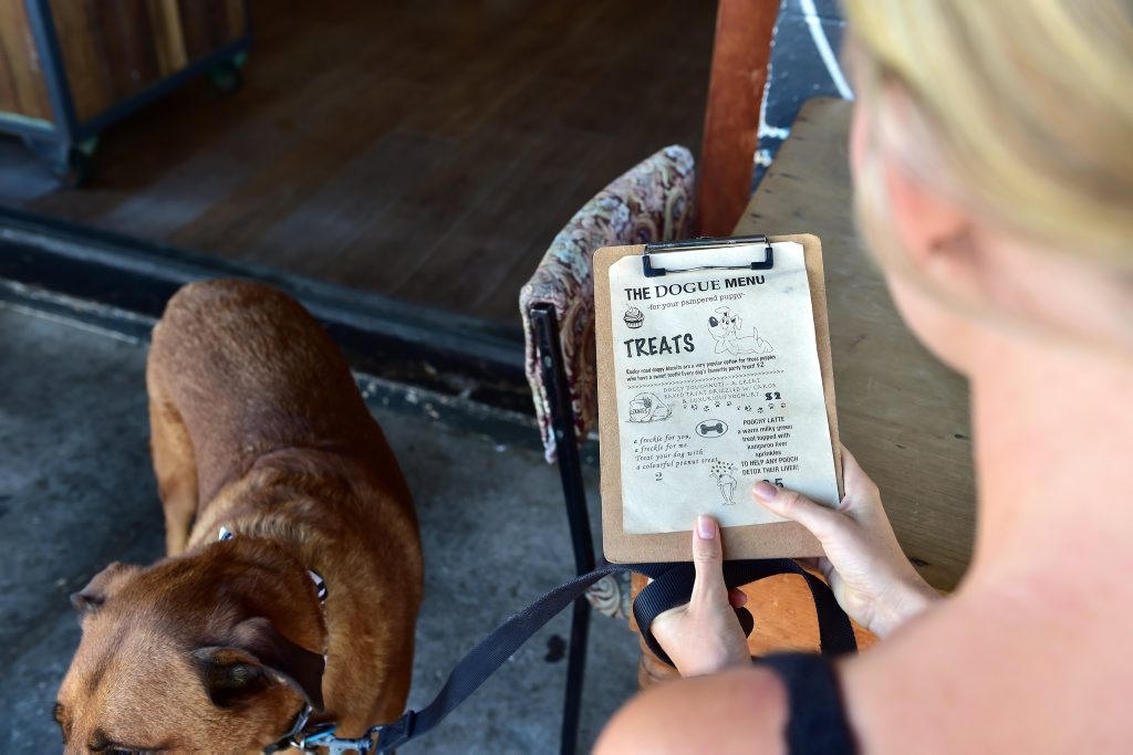 The Velo Project Cafe in Mooloolaba has a special dog menu. Monique Pollard looks at the dog menu. Photo: Che Chapman / Sunshine Coast Daily