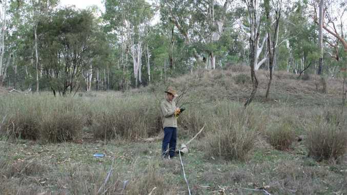 A landholder performs a vegetation assessment of his property.