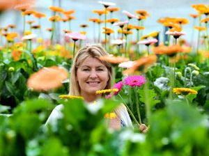 Markets get a happy face with Lynn's bright farm flowers
