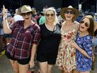 CMC Rocks Festival at Willowbank on Saturday.Photo: Rob Williams / The Queensland Times